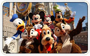 Disney World Group Tickets
