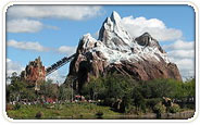 Disney's Animal Kingdom Group Tickets